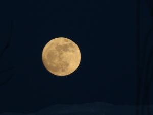 apr_7_2012_moon8