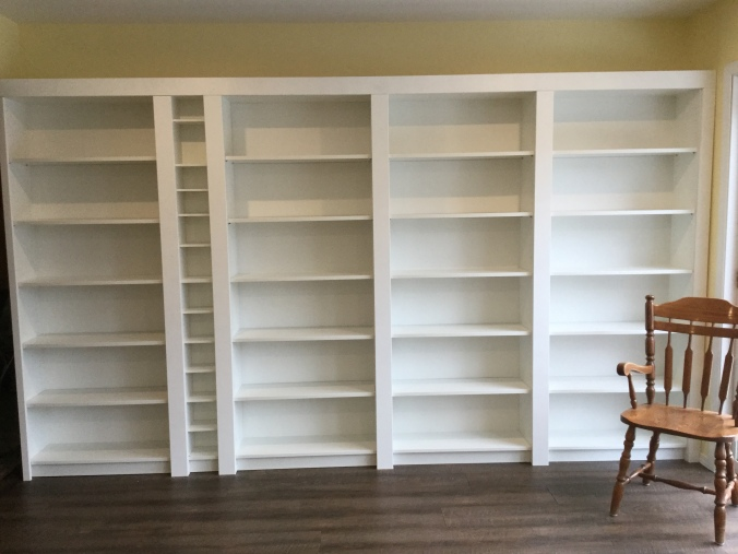 A photo of Ev's work-in-progress library